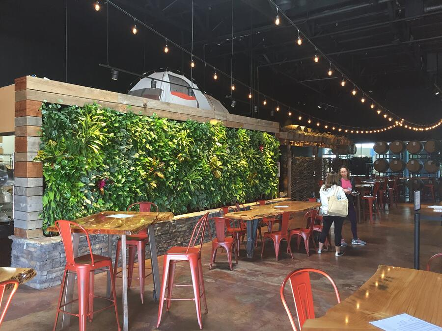 A greenwall inside the brewery, Belching Beaver.