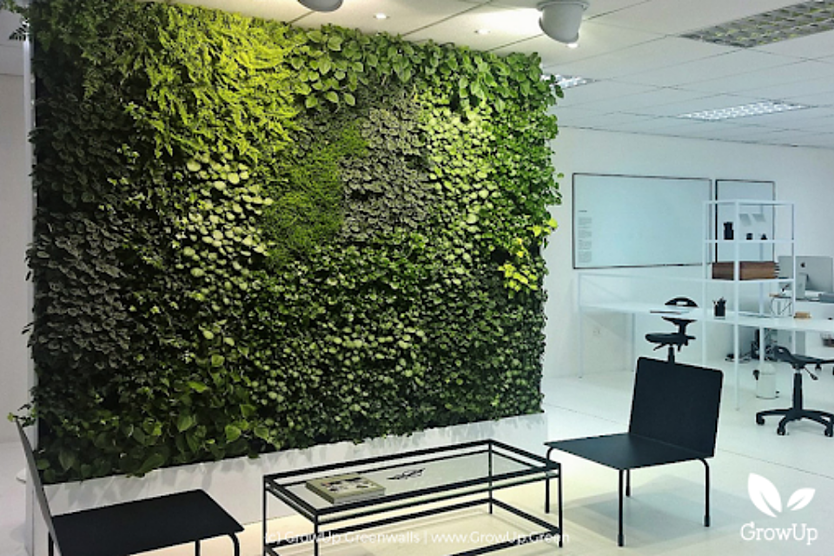 A greenwall inside an office space with lighting on it. A small table and two chairs sit in front of it