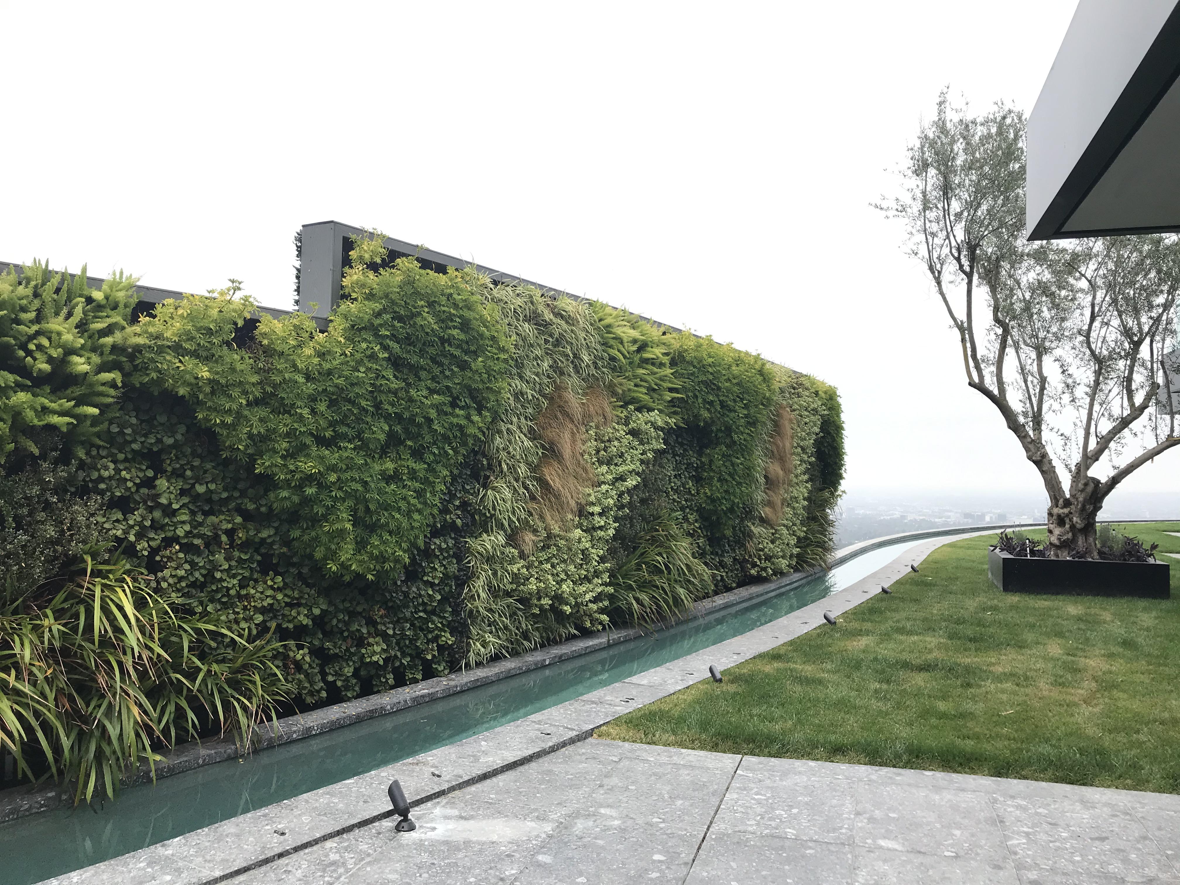 An outdoor greenwall