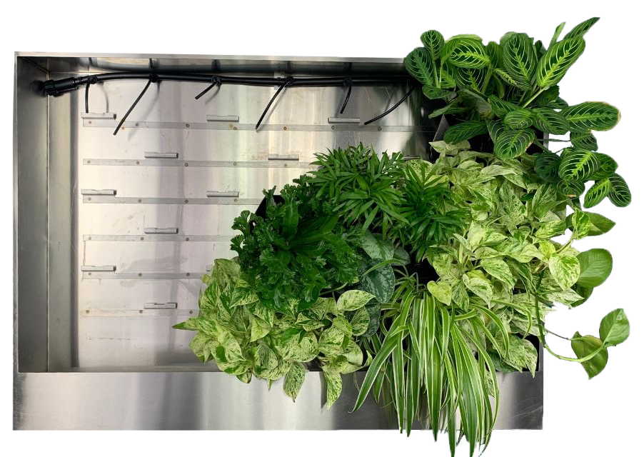 Wall Unit partial plants jpg